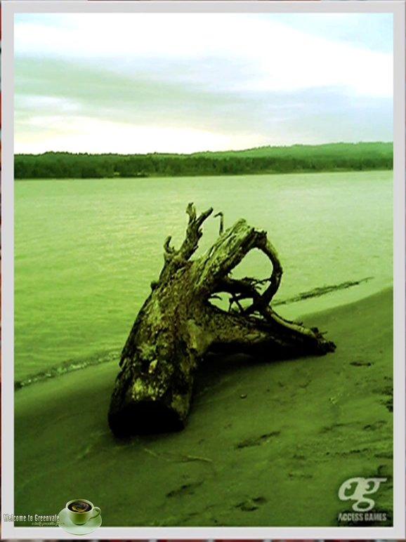 nature_07