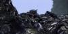 vlcsnap-2011-09-17-01h12m36s254
