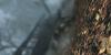 vlcsnap-2011-09-17-01h14m16s225